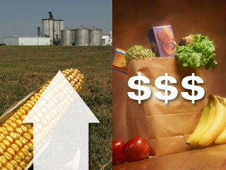 Rising Canadian food prices / inflation